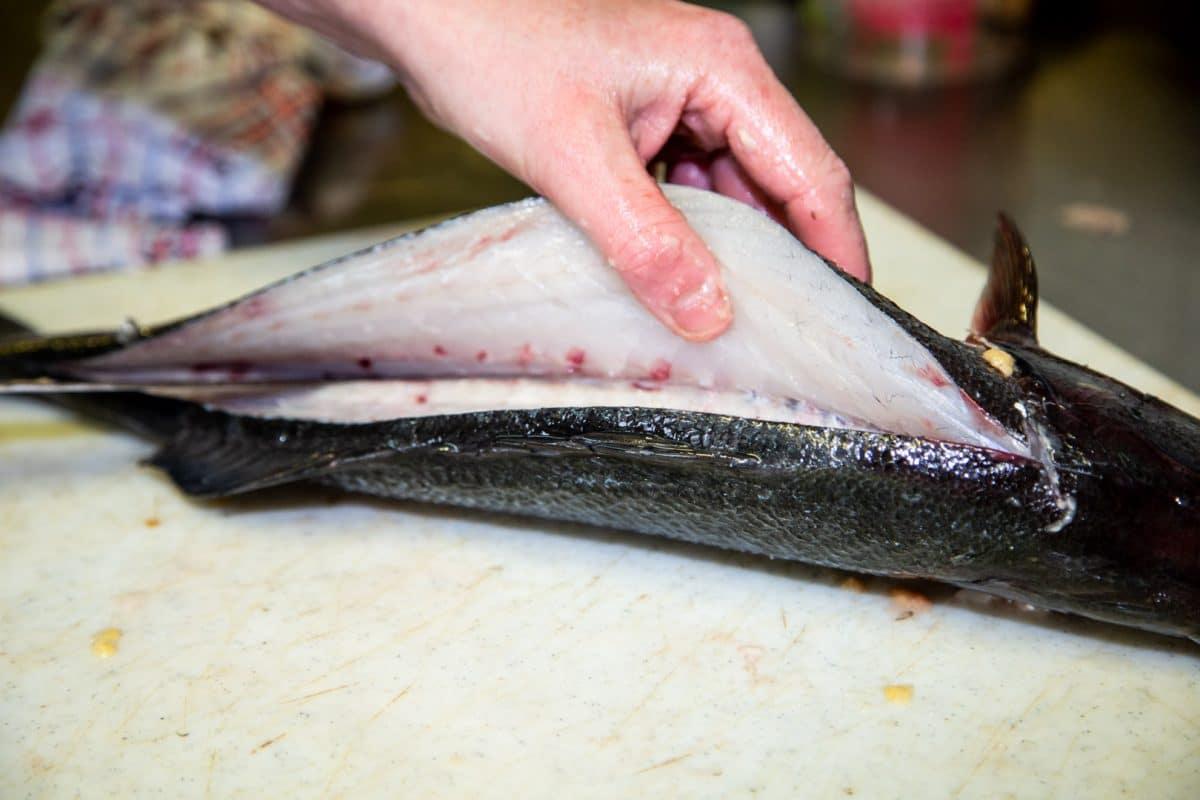 decoupe poisson